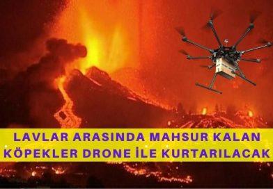 Lavlar Arasında Kalan 3 Köpek Dronelar İle Tahliye Edilecek